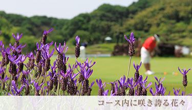 コース内に咲き誇る花々